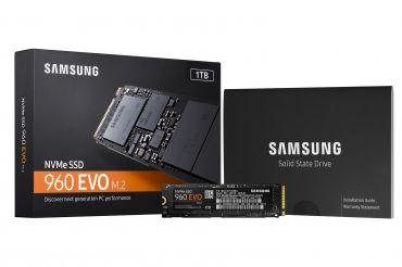 Samsung 960 EVO MZ-V6E250BW - Solid-State-Disk - verschlüsselt - 250 GB - intern - ( M.2 2280 ) - PCI Express 3.0 x4 (NVMe)