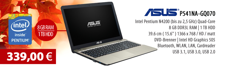 "ASUS P541NA-GQ070 Notebook - ohne BS - Pentium N4200 Quad-Core - 8 GB RAM - 1 TB HDD - DVD SuperMulti - 39.6 cm (15.6"") entspiegelt - USB 3.1, WLAN"