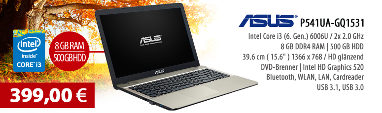 "ASUS P541UA-GQ1531 Notebook - ohne BS - Intel Core i3-6006U - 8 GB RAM - 500 GB HDD - DVD SuperMulti - 39.6 cm (15.6"") entspiegelt - USB 3.1, WLAN"